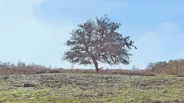 De Alleenstaande Boom - Natuur - Landschap - Loonse en Drunense Duinen - Schilderij van Schildersatelier van der Ven