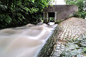 Water flows van