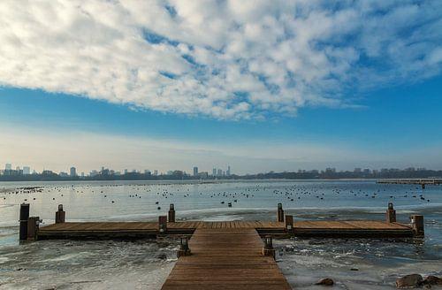 Winter aan de Kralingse Plas van Ilya Korzelius