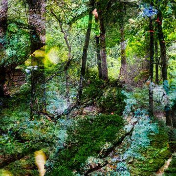 Märchenwald I von Caroline Boogaard