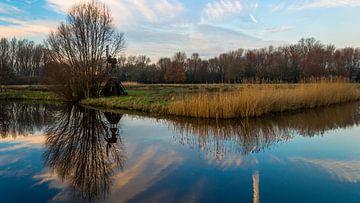 Reflectie in meertje van Richard Steenvoorden