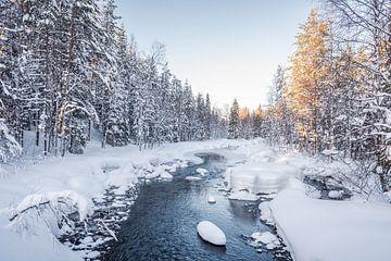 Finnisch-Lappland von Anita Kabbedijk