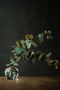 Foto print | takken met blauw groene bladeren in vaasje | botanisch van Jenneke Boeijink