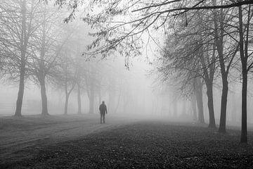 de eenzame man in het mistige bos van Nicola Mathu