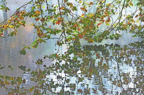 Herfst in Het Park, Rotterdam van Frans Blok