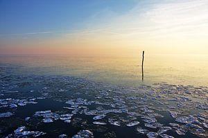 Visserij stok van een net kalm bevroren water