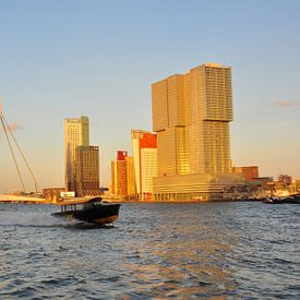 Rotterdam van Rogier Vermeulen