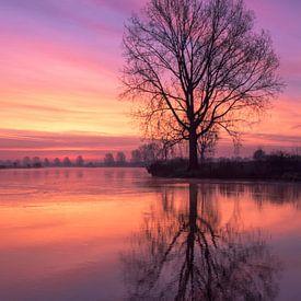 Rode reflectie aan de Maas van R. Maas