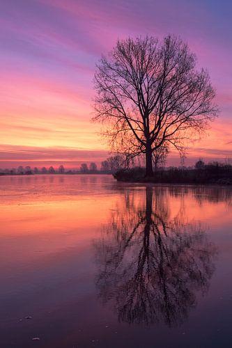Rode reflectie aan de Maas
