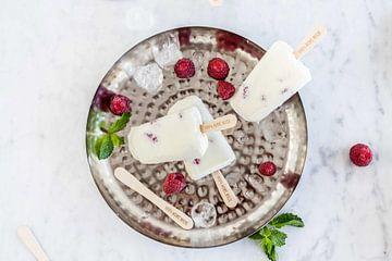 Joghurt Himbeereiscreme mit Joghurt von Nina van der Kleij