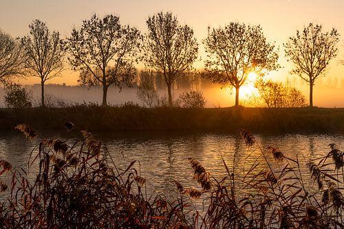 zonsopkomst langs de schelde in Gent - Belgie