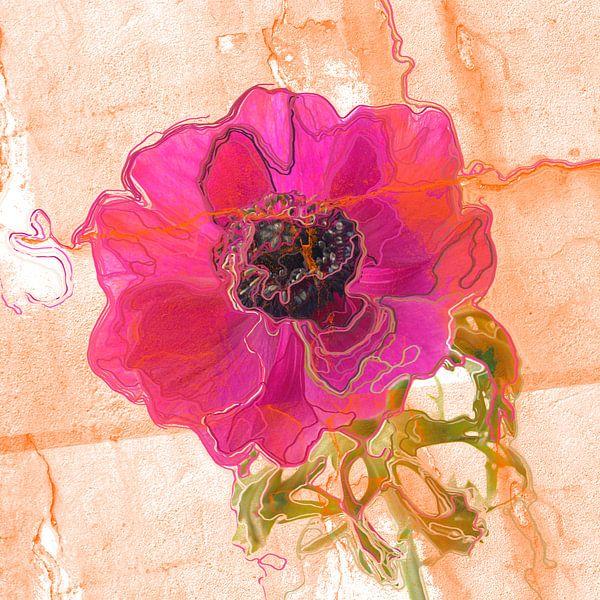 Roze anemoon