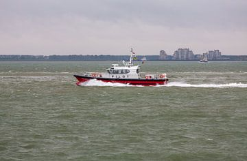 Lotsenboot Wulpen von MSP Canvas