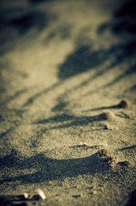 Sand of time van Dick Nieswaag
