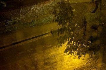 Abendlicht im Regen von Els Hattink