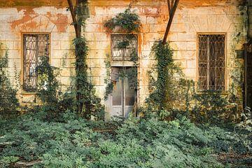 Dschungel-Haus von Bjorn Renskers