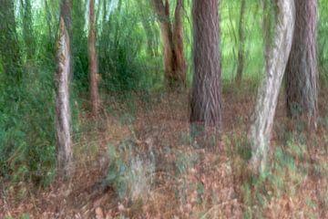 Abstracte bomen in een bos van Tonko Oosterink