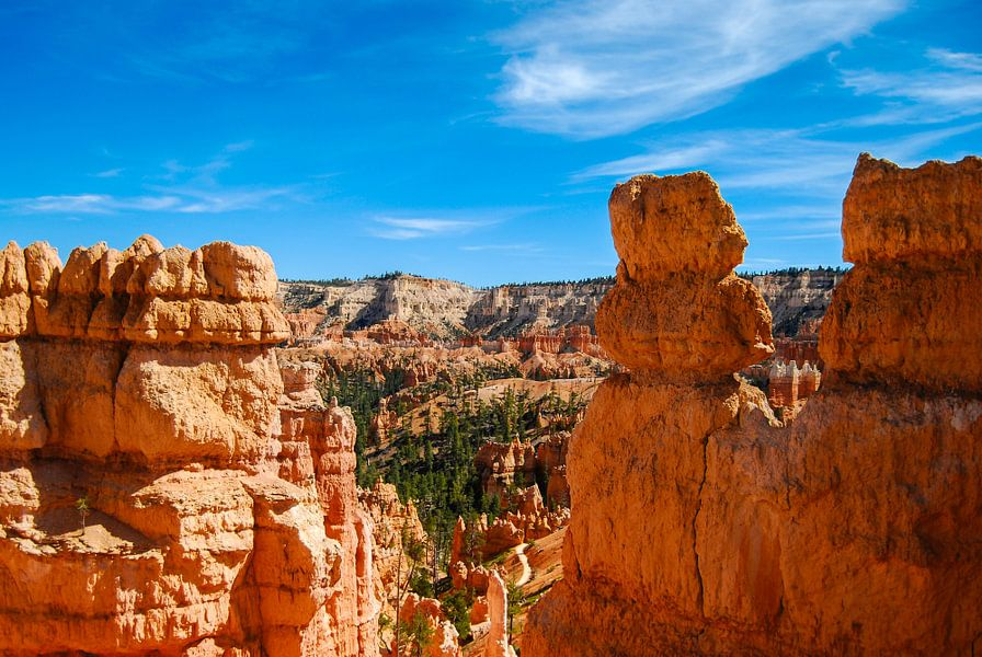 Het ruige landschap van Bryce Canyon, USA van Ricardo Bouman | Fotografie