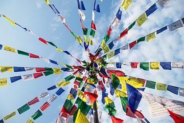 Die Flagge von Tibet von Ton Tolboom