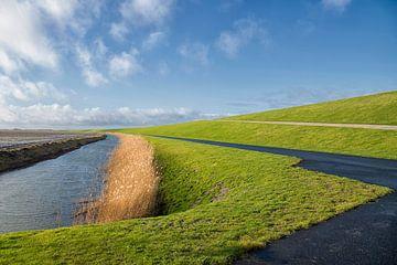 Groningen Wijds landschap van Marly De Kok