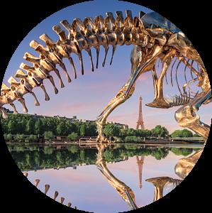 Le T-Rex van Arnaud Bertrande