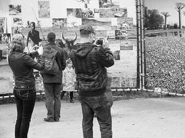 foto's, foto's, foto's maken von Mirjam van Ginkel