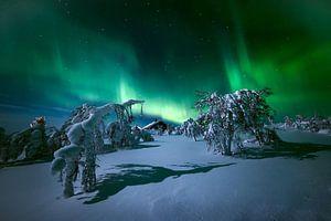 Het licht van Lapland. van Stan Bessems