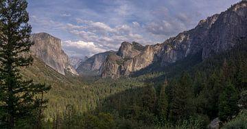 Yosemite NP - Blick über das Tal von Toon van den Einde