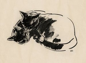 Micky en Noesje tekening van twee katten