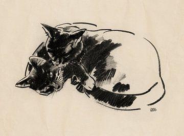 Micky en Noesje tekening van twee katten von Pieter Hogenbirk