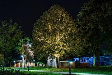Verlichte boom in Waalwijk van Anouk IJpelaar