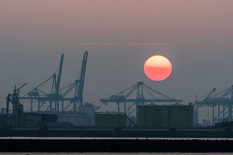 Zonsondergang op de Maasvlakte, Hoek van Holland / Rotterdam van Eddy Westdijk