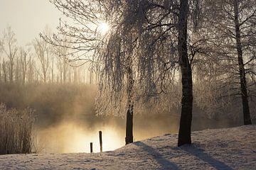 Winter in de Biesbosch sur Michel van Kooten