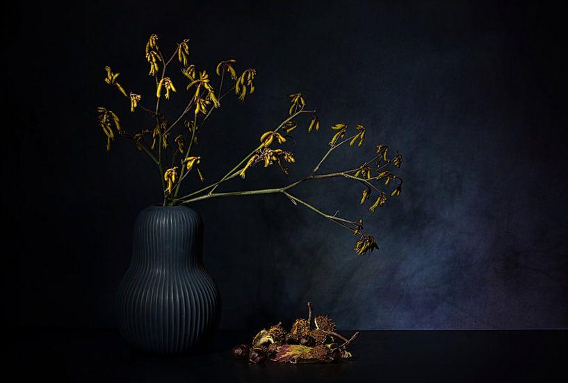 Herbsttraum von Saskia Dingemans