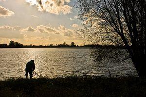 Visser langs de Rijn van
