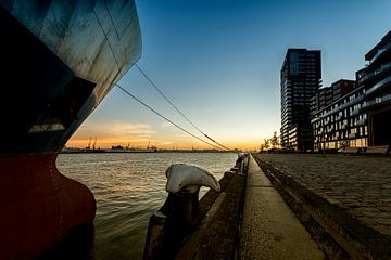 The Lloydkade Rotterdam von