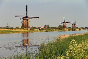 Kinderdijk molens van Dennis van de Water