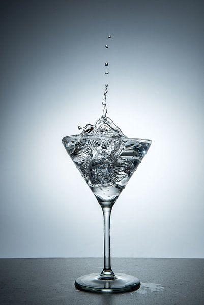 Martini 1 van Cees Petter