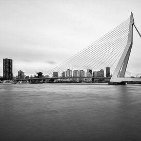 Zwart-wit foto van de Erasmusbrug van Mark De Rooij