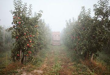 Appelgaard van Marianne Bal