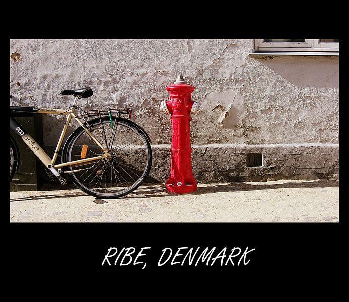 Brandkraan in Ribe, Denemarken van Arnold de Gans