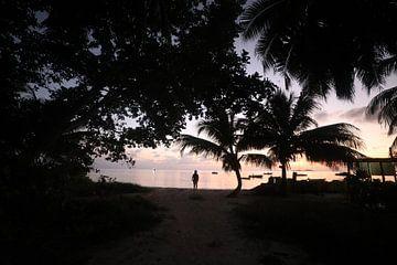 Twilight. Indische Oceaan van Dmitriy Koublitskiy