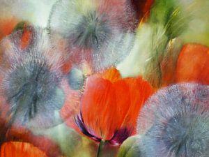 Pusteblumen mit rotem Mohn von Annette Schmucker