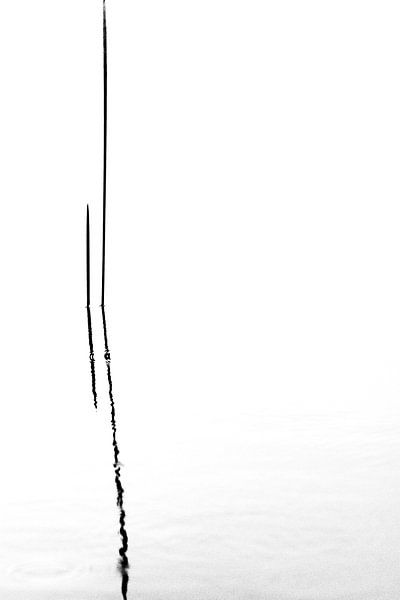 Streep van Martzen Fotografie