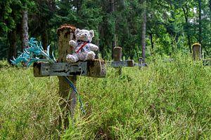 Friedhof der Wahnsinnigen