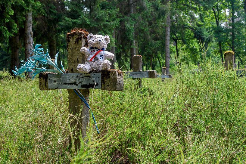 Friedhof der Wahnsinnigen von Danny de Jong