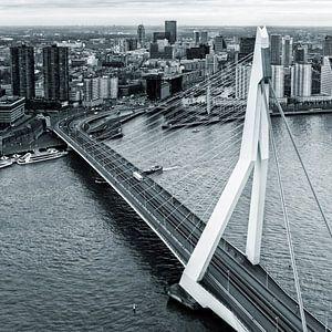 Rotterdam aus dem 44. Stockwerk