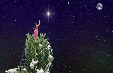 reaching the star van