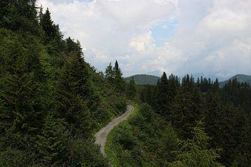Bergweg van kirsten propitius