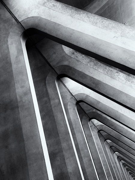 Abstracte betonconstructies op het treinstation van Luik (Gare de Liège-Guillemins) van John Trap